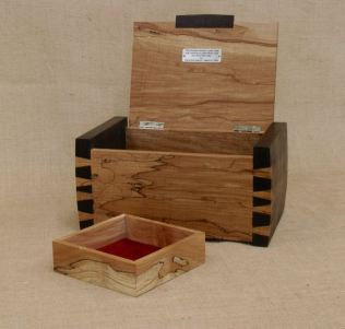 Box open with Tray